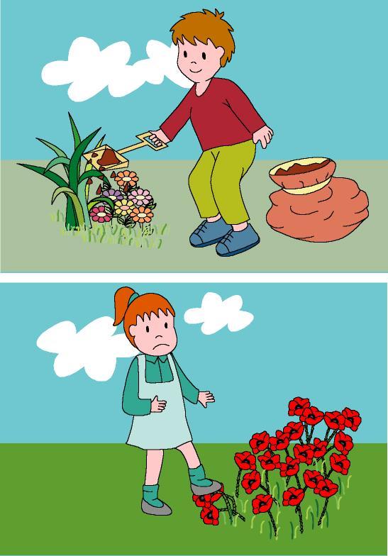 Material complenetario actividad adivina c mo la cuido - Cosas sobre las plantas ...